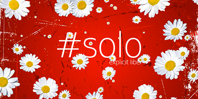 #solo Paquerettes web